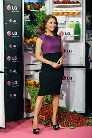 LGE_fridge